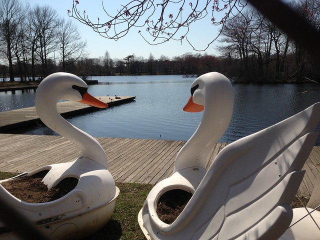 Belmont Lake State Park Twin Swan Paddle Boats Explore