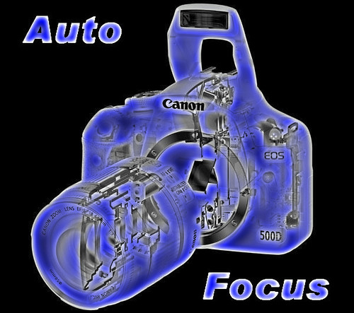 Level 9 Auto Focus