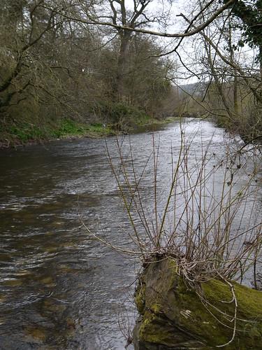River Omny