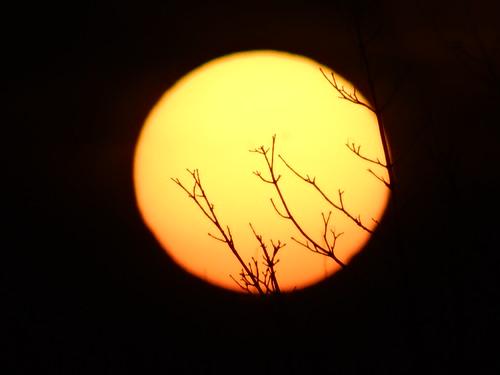 Sonnenaufgang das starre Auge zur Erde