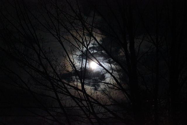 pink moon no. 1