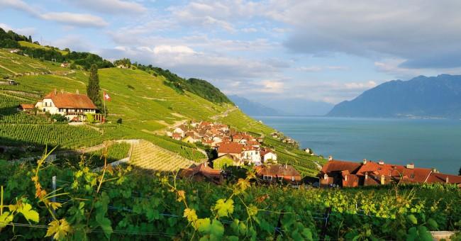 Oblast Ženevského jezera