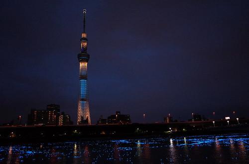Tokyo Hotaru Light Symphony 2013-23