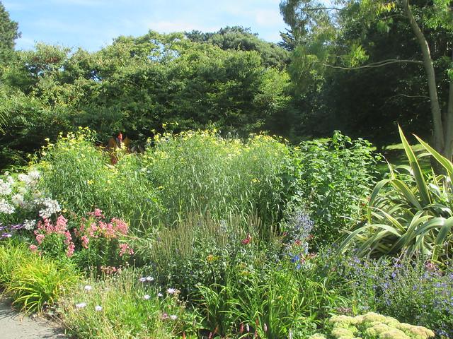 Botanic gardens, Ventnor, Isle of Wight.