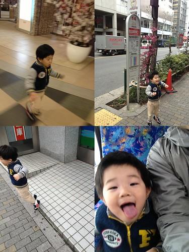 朝の散歩 2012/3/29