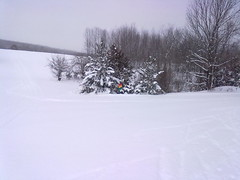 There were blizzards everytime I went up to Highlands Nordic, but that meant lots of good powder.