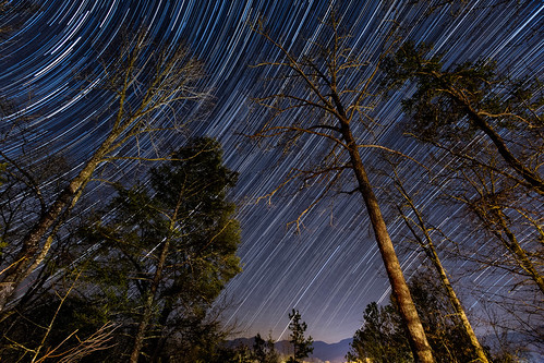 longexposure trees mountains stars star tennessee tripod trails wideangle stacking smokymountains startrails intervalometer 1635mmf28 celestialequator starttrail