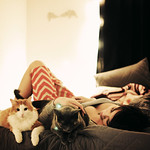 Image of catlady from Flickr