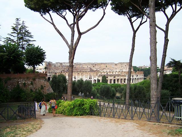 Coliseo de Roma desde el Palatino