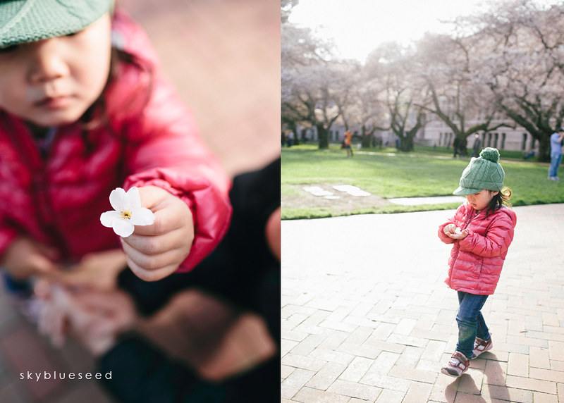 Holding Blossom