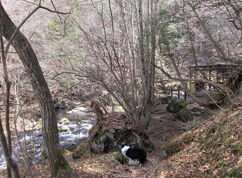 滝の湯川と東屋 2013年4月10日10:58 by Poran111