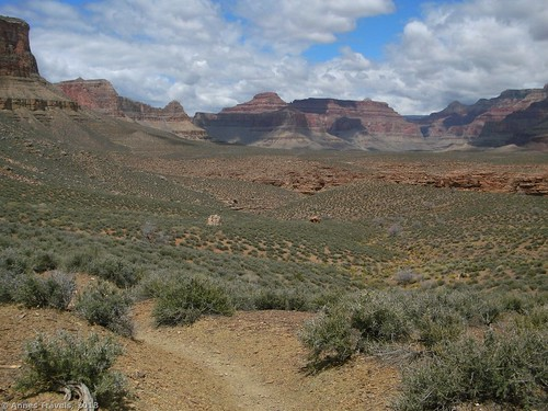 The Tonto Trail on the