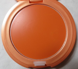 Stila Convertible Color in Gladiola