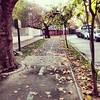 temprano, en la mañana  #ciclovía