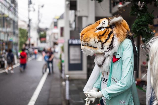 20130612_06_Tiger head