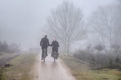 2011 02 24 Mist op de Westerheide