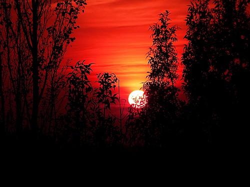 sunset españa sol spain zaragoza aragon otoño ebro zaragozaparque