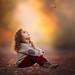 Magic by ljholloway photography