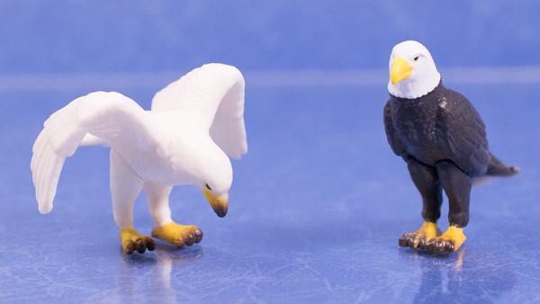 ちょこっとレビュー エポックカプセルフィギュア「指のり猛禽類」「指のりツバメ」