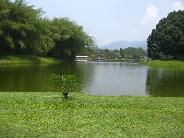 Taiping lake garden IMG_5945