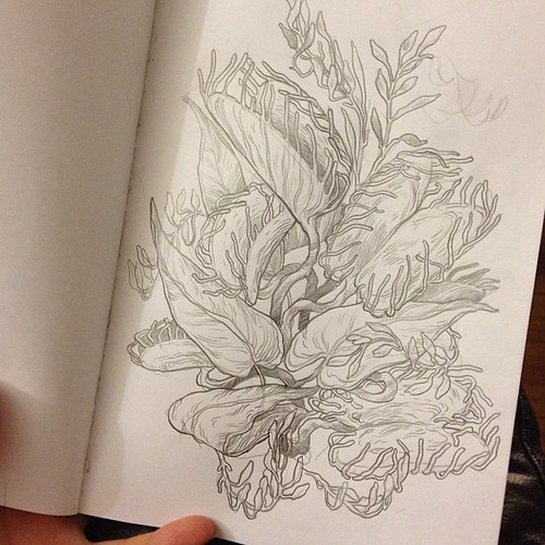 #Sketch of a Venus flytrap! #art #illustration
