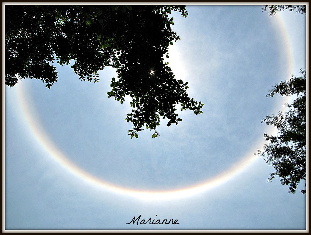 The Sky - Halo around Sun