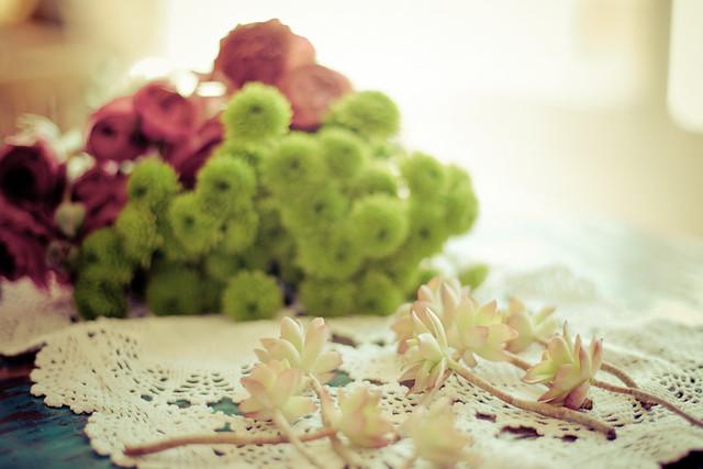 bouquet de fleurs et plantes grasses
