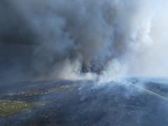 lava dome(0.0), geyser(0.0), volcano(1.0), volcanic landform(1.0),