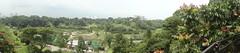 Panorama of Pasir Panjang Ridge