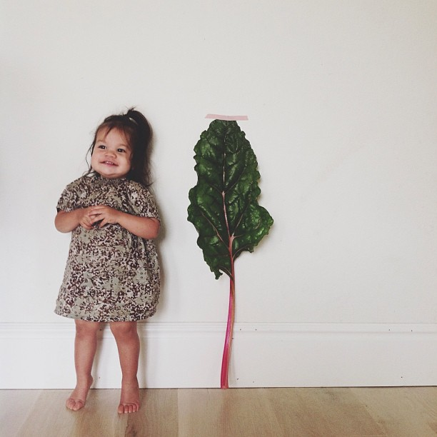 baby and chard