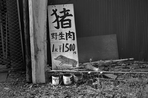 JE C4 04 033 大分県天ケ瀬温泉 M9P ST50 2.5#