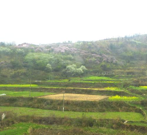 Guizhou13-Fenghuang-Kaili-Train (54)