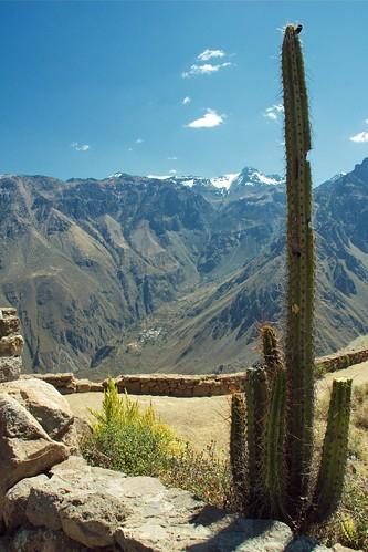 peru geotagged chivay valledelcolca geo:tool=yuancc geo:lat=15611097 geo:lon=7190577