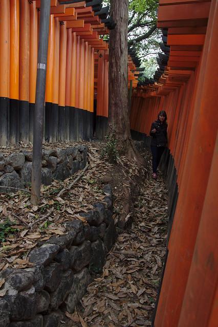 1011 - Fushimi Inari Taisha Shrine