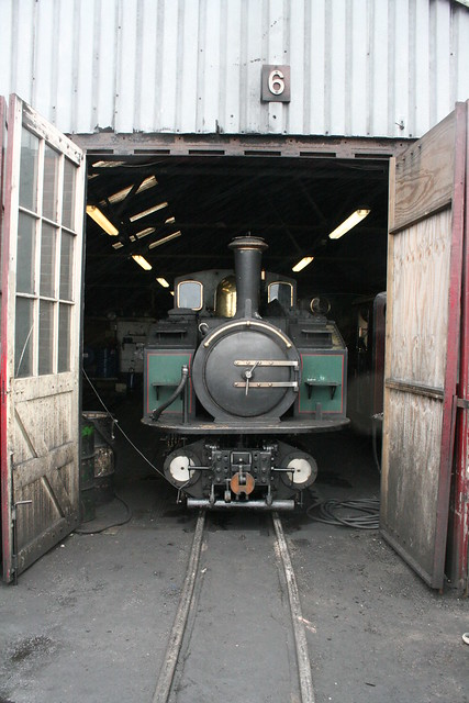 Earl of Merioneth on shed