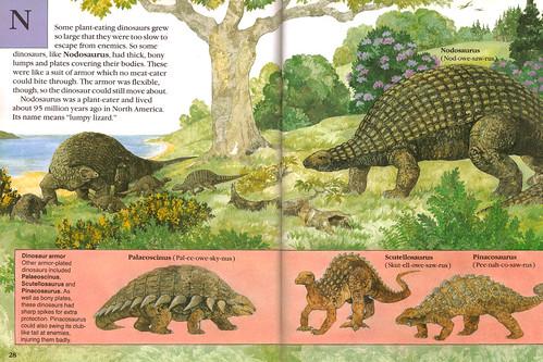 Nodosaurus Skeleton Nodosaurus & friends