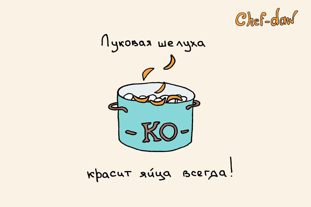 chef_daw_captain_obvious