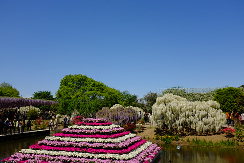 flower pyramid