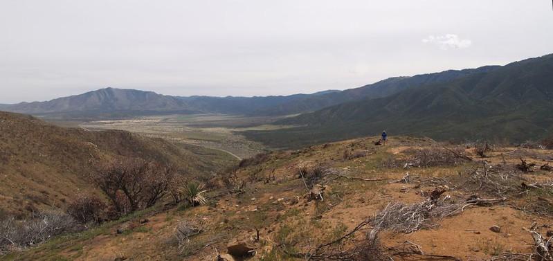 PCT San Felipe Hills - firebreak where we camped
