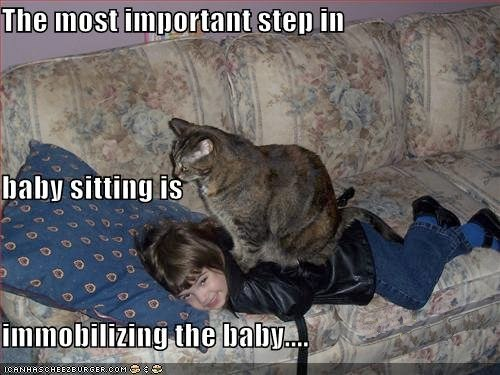 funny-pictures-cat-babysits-on-the-baby