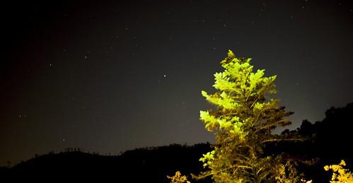 星がよく見える