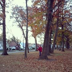 Love watching Sean on a geocache hunt in Warinanco Park in Roselle, NJ on 11/15.