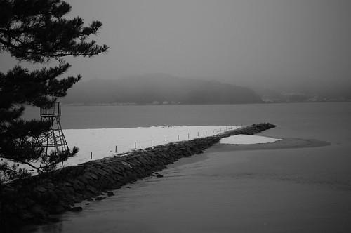 sea of winter