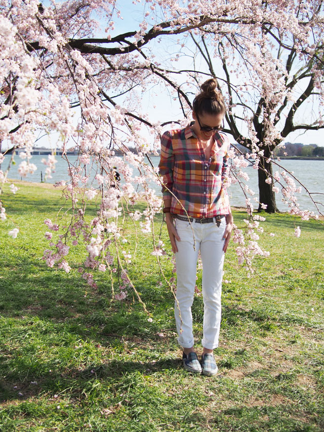 my fair vanity rachel mlinarchik cherry blossoms plaid bike ride tidal basin 9