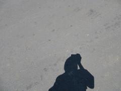 floor(0.0), footprint(0.0), wall(0.0), snow(0.0), blue(0.0), flooring(0.0), asphalt(1.0), sand(1.0), white(1.0), road surface(1.0), shadow(1.0), black(1.0),