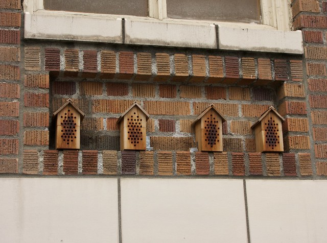 Mason Bee Houses