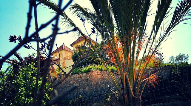 Finca in rural Majorca
