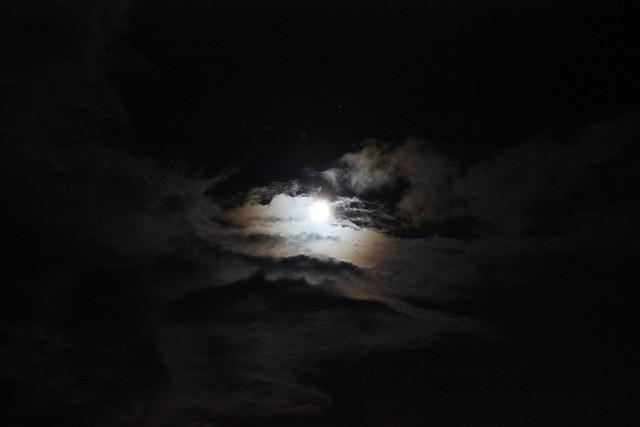 pink moon no. 4