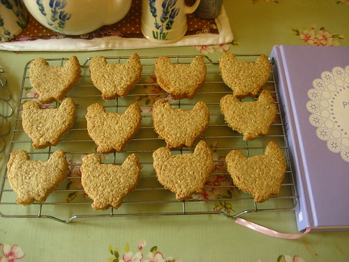 A flock of chicken digestive biscuits