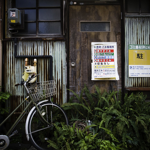 Door with Ferns and Bicycle, Monzennakacho